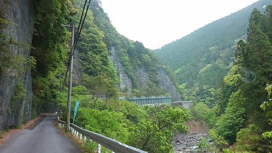 Totsukawa 21 Century Forest Botanical Park