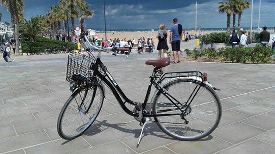 Monzo Bikes