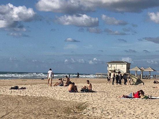 Q Hotel: poleg beach