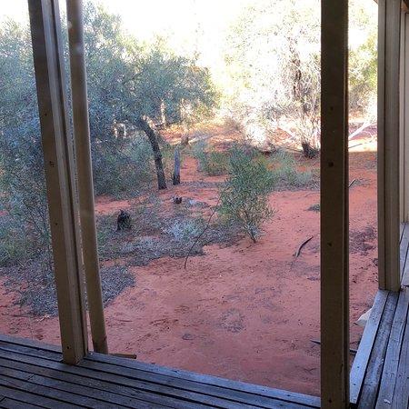 Erldunda, ออสเตรเลีย: photo0.jpg