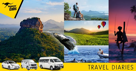 Kangaroo Cabs: Reliable, cost effective and comfortable way to explore Sri Lanka. Best rates on tours and trans