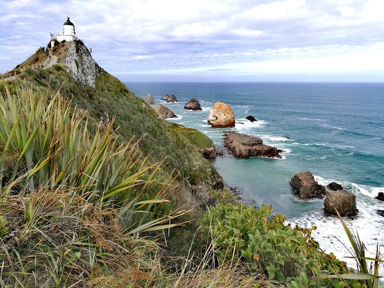 Nugget Point Lighthouse: IMG_20180426_190012_large.jpg