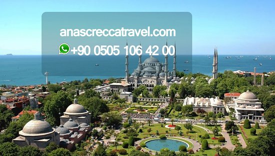 Anas Crecca Travel