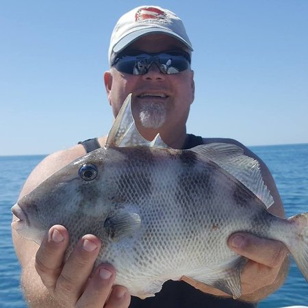Off The Grid Fishing Charters: Trigger Fish