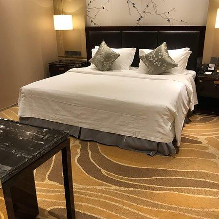 Снимок Oriental Garden Hotel