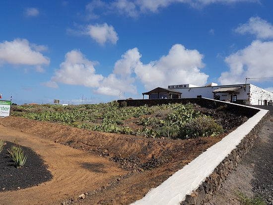 Finca Canarias Aloe Vera: Aussenansicht