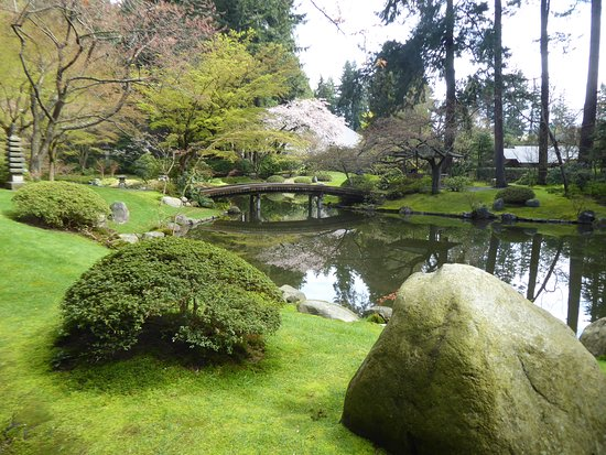 pond and bridge. - Picture of Nitobe Memorial Garden, Vancouver ...