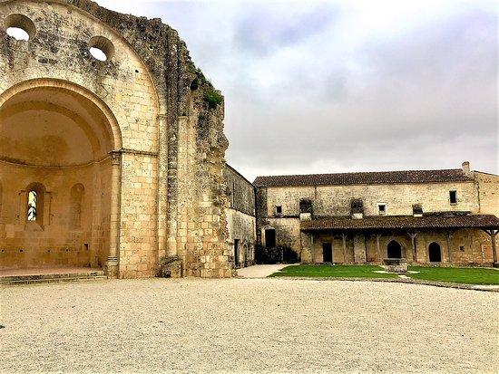 Trizay, Francja: La cour