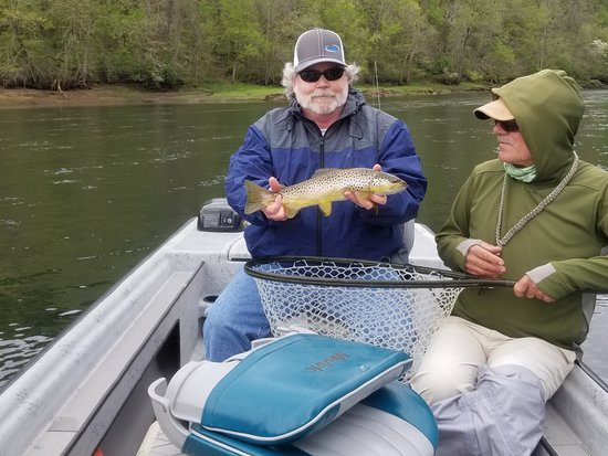 Norfork, AR: Great day on the White River catching Brown trout, does not get any better