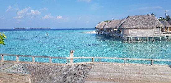 Milaidhoo Island Photo
