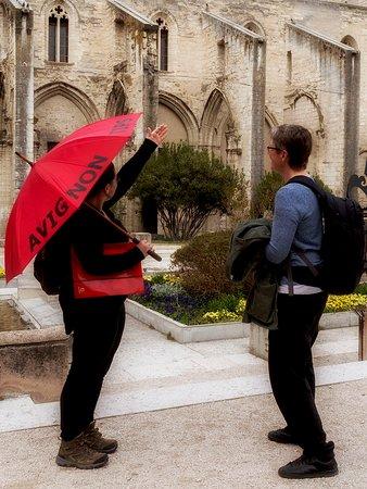 Avignon Tips Free Tours