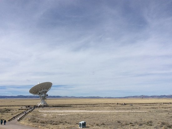 Very Large Array: One dish outstanding in its field
