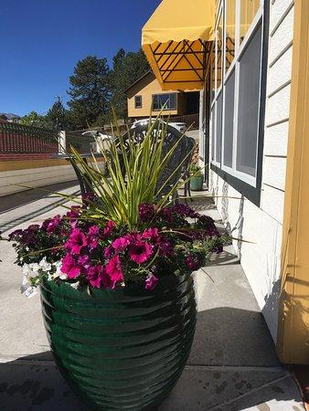 SEASONED An American Bistro: Patio Flowers