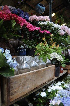 Marche aux fleurs - Ile de la Cite (Paris) - 2018 All You Need to Know Before You Go (with ...