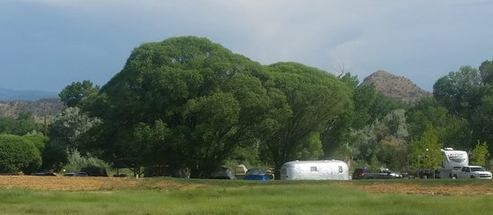 Silt, CO: Camping amongst mature trees on the eastern side of the campground.