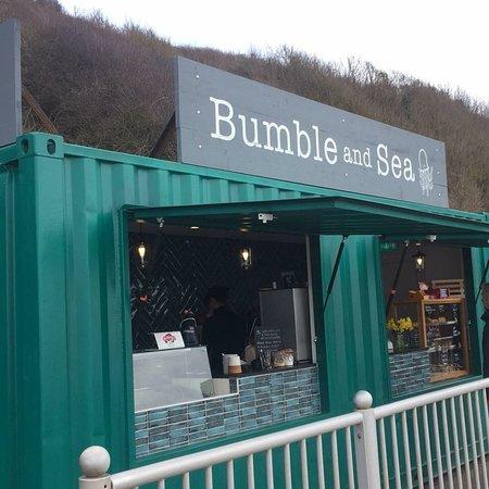 Bumble and Sea