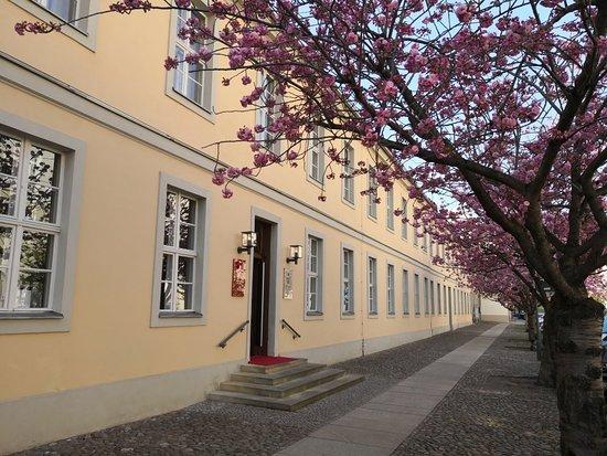 Hotel Am Großen Waisenhaus: IMG_20180419_165004_large.jpg
