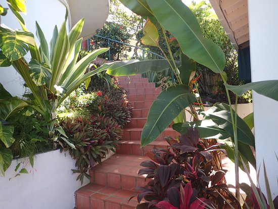 Arnos Vale, Tobago: Stairway from Cabanas to Pool