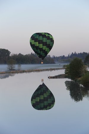 Willamette Valley Balloons: by Shari Gale