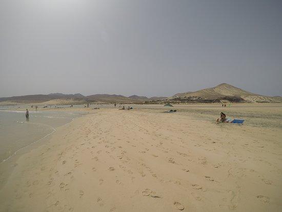 Playa de Sotavento (Playa Risco del Paso y Playa Barca): Vista de la orilla
