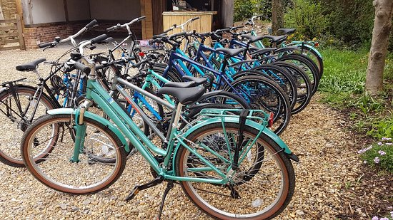 Wells Bike Hire