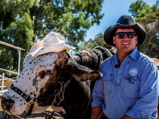 Longreach, Австралия: The Outback Show presented by The Australian Stockmans Hall Of Fame