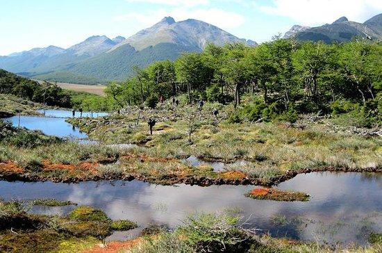 Nationaal park Tierra del Fuego met ...