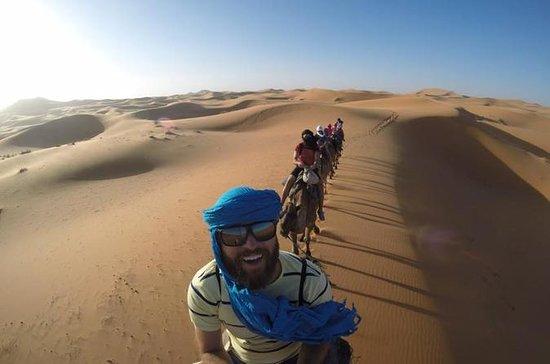 3 dias Desert Tour de Essaouira ao...