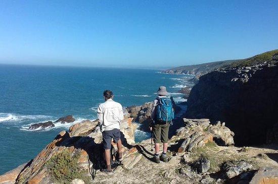 Guided Robberg Peninsula Hike