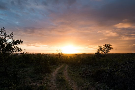 Grietjie Nature Reserve, Южная Африка: Sunrise on the morning game drive.