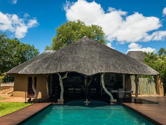 Muweti Bush Lodge: Cooling off in pool.