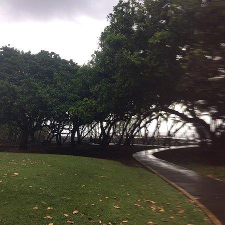 Pahoa, Hawái: photo0.jpg