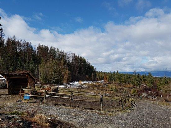 Myra Canyon Ranch: 20180417_112158_large.jpg