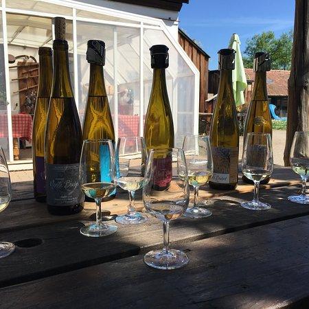 Barr, França: Domaine Noelle Bachert Vins D'Alsace
