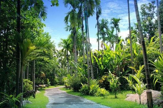 Landscape - Picture of Pai Island Resort - Tripadvisor