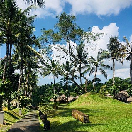 Maya Ubud Resort & Spa: photo2.jpg