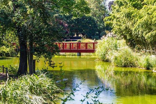 Jardin des Plantes Saint-Cyprien