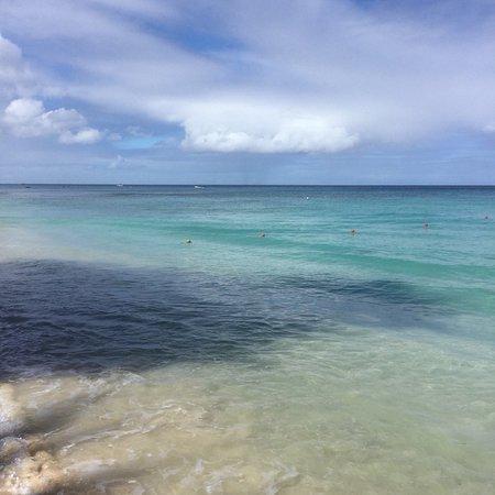 Paynes Bay, Μπαρμπάντος: photo2.jpg