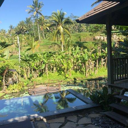 Pondok Sebatu Villa: photo2.jpg