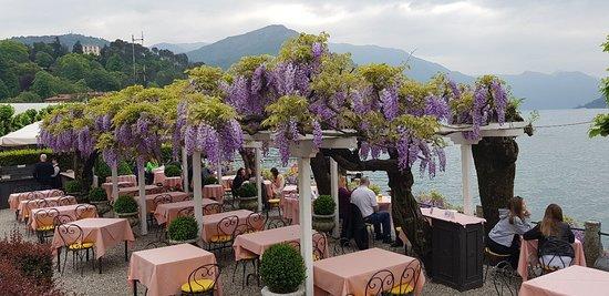Florence Restaurant 20180427 163327 Large Jpg