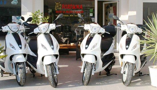 Fortuna Rent a Moto