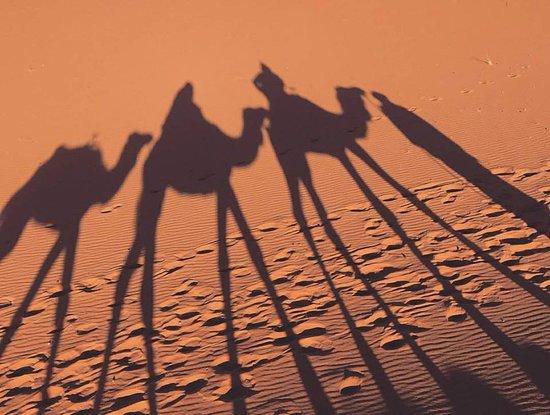 Marrakech First Excursion