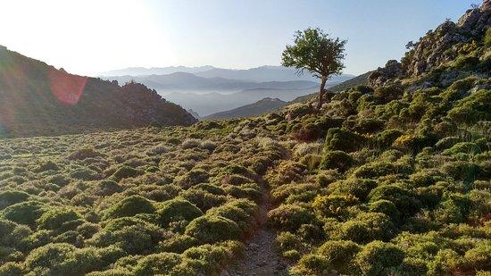 Milia, Greece: IMG_20180424_073430_HDR_large.jpg