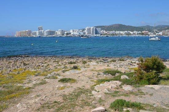 Playa del Arenal