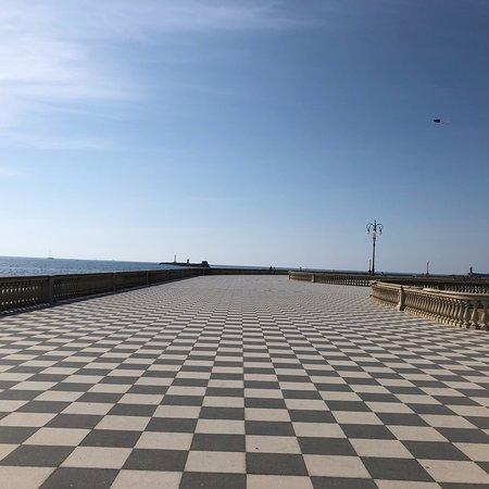 photo2.jpg - Picture of Terrazza Mascagni, Livorno - TripAdvisor