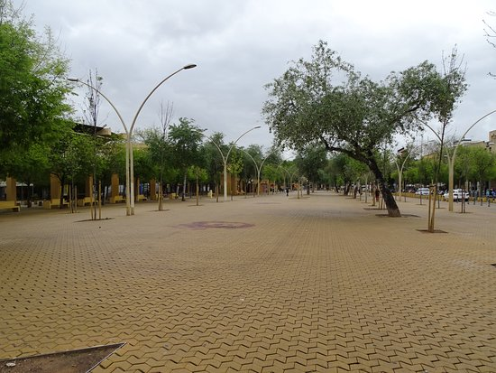 Cafe Central Sevilla