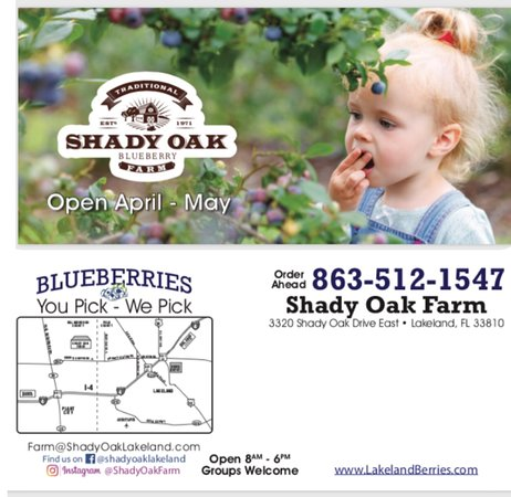 Lakeland, FL: Our flyer - we are open during april and may