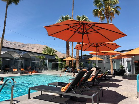 The Palm Springs Hotel: View from inside pool area, loungers, umbrellas, glass fence, pool