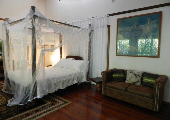 Oskar's Rainforest Retreat Bed and Breakfast