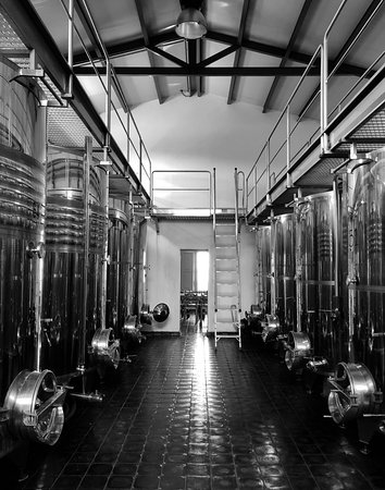 Franco Wine Tour Experience: Inside the winery